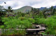 Kampung Sumber Alam,Cipanas-Garut