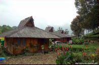 Rumah Kayu Kelapa - Ciwalini