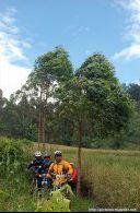 Trek sepeda Kawah Kamojang ke Situ Cibeureum, Samarang - Garut