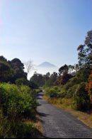 Jalan Cisarua menuju Papandayan