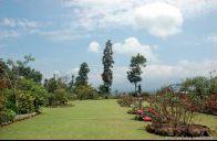 Sebuah resort/penginapan dengan tema Kebun Mawar, yang berada didaerah Samarang Garut, setelah Kampung Sampireun dan Sebelum Kawah Kamojang.